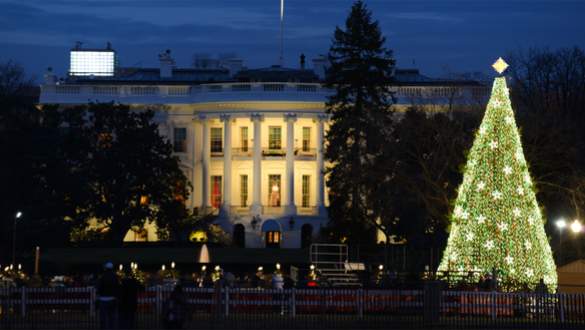 The US Government Under Financial Siege Scrooge Stays in Washington.