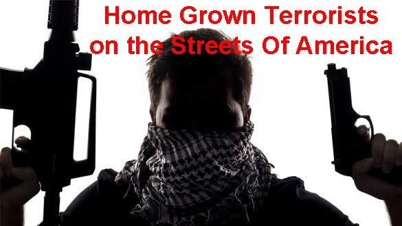 Terror on the Streets of America The New Political Diversion