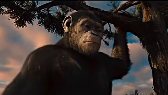 Rise of the Planet of the Apes Becoming Mind-Blowing Reality