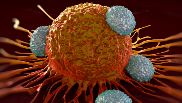 Treating Cancer and Autoimmune Diseases by Manipulating Immune Cells