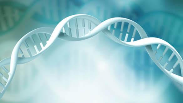 Human 2.0 a Genetic Upgrade