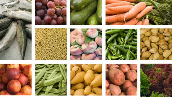 Stock Scorecard: Whole Foods Market (WFM)
