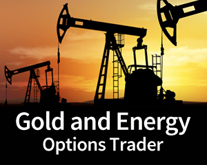 [Gold and Energy Options Trader]