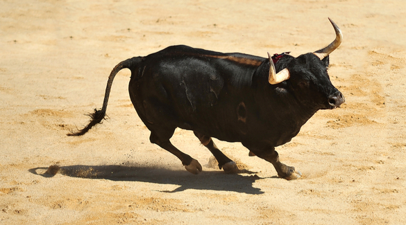 The Daily Briefing For November 4th: Futures Higher As The Bull Is Alive